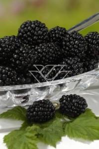 Owoce jeżyny bezkolcowej